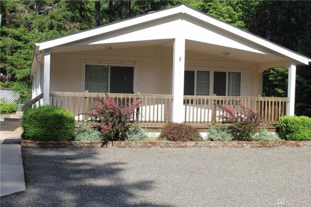 81 N Goldeneye Dr, Hoodsport, WA 98548 (#1307966) :: Crutcher Dennis - My Puget Sound Homes
