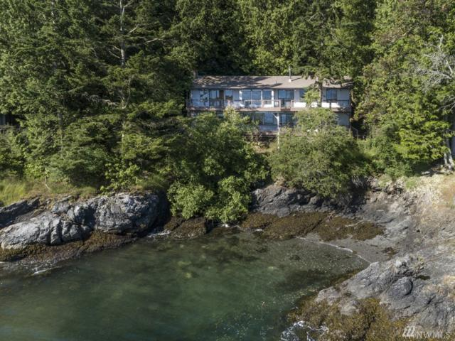 455 Mineral Point Rd, Friday Harbor, WA 98250 (#1308639) :: Homes on the Sound
