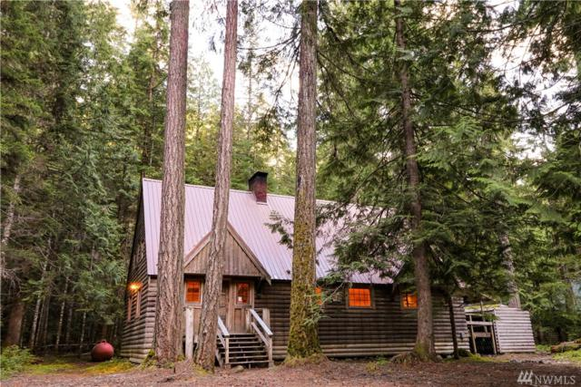 142 Silver Springs-Usfs, Greenwater, WA 98022 (#1310578) :: Real Estate Solutions Group