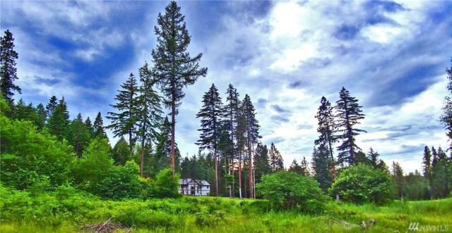 0-Lot 6 Hermitage Dr, Cle Elum, WA 98922 (#1313675) :: Real Estate Solutions Group