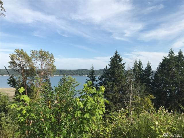 5-Lot NE North Shore Rd, Belfair, WA 98528 (#1313769) :: Kimberly Gartland Group