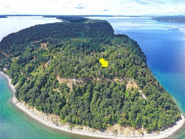 0 South Camano Dr, Camano Island, WA 98282 (#1316035) :: Kimberly Gartland Group