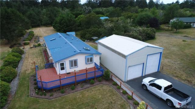 33503 Douglas Dr, Ocean Park, WA 98640 (#1317373) :: Real Estate Solutions Group