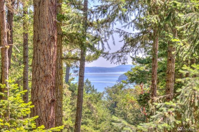 315 Rebe Rd, Orcas Island, WA 98280 (#1321352) :: Real Estate Solutions Group