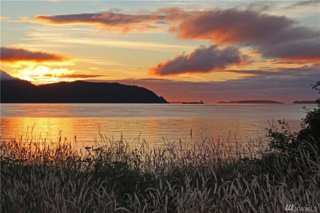 0 Sinclair Island, Anacortes, WA 98221 (#1321990) :: Homes on the Sound