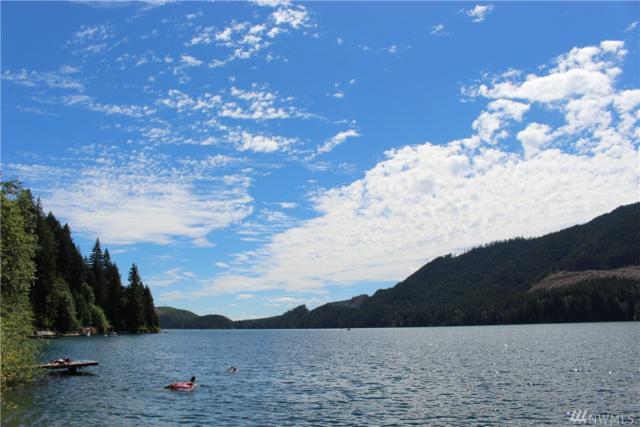 5785 N Lake Cushman Road, Hoodsport, WA 98548 (#1322564) :: Keller Williams Realty Greater Seattle