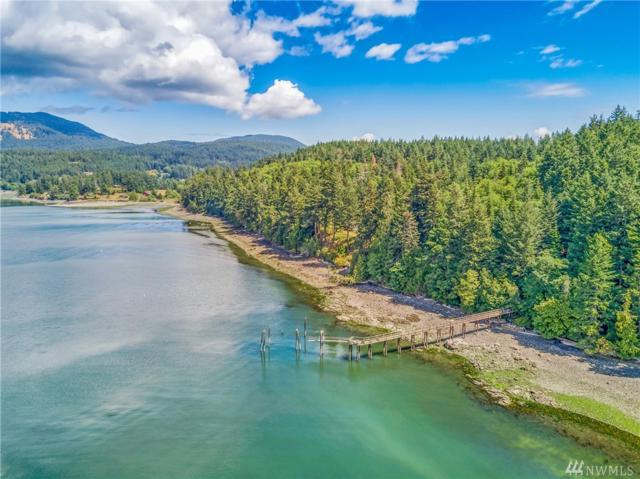 160 Merrymac Lane, Orcas Island, WA 98245 (#1324566) :: Real Estate Solutions Group