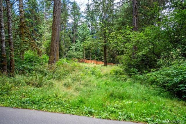 4320 150th St NW, Gig Harbor, WA 98332 (#1324927) :: Kimberly Gartland Group