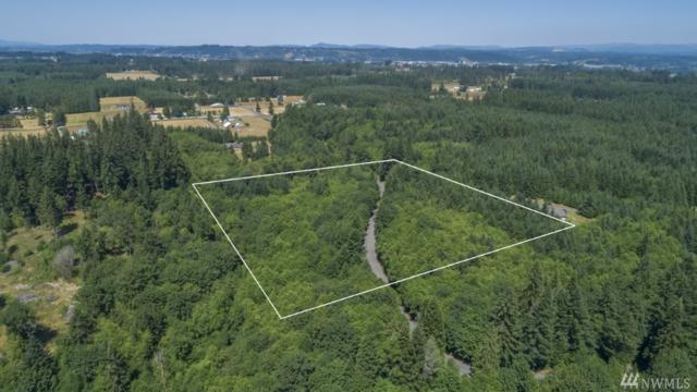 0 Berry Rd, Napavine, WA 98532 (#1326171) :: Homes on the Sound