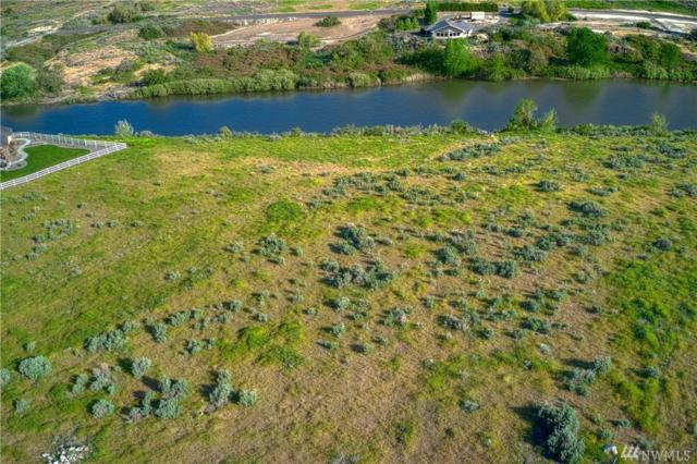 2 Salmon Run Prnw, Prosser, WA 99350 (#1331635) :: Capstone Ventures Inc