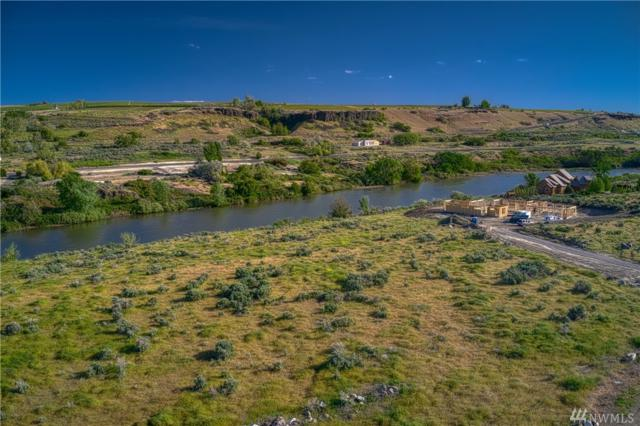 3 Salmon Run Prnw, Prosser, WA 99350 (#1331655) :: Kimberly Gartland Group