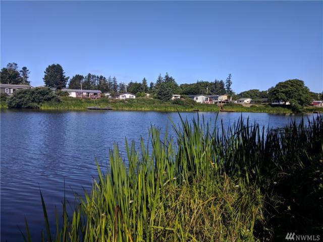 770 Cardinal Ave NE, Ocean Shores, WA 98569 (#1332972) :: NW Home Experts