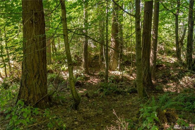 0 SW Caster Rd, Vashon, WA 98070 (#1333246) :: Ben Kinney Real Estate Team