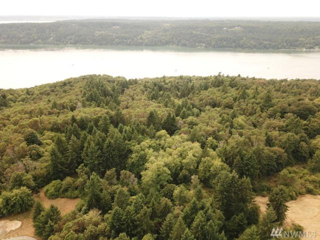 0 SW 280th St, Vashon, WA 98070 (#1333447) :: Pickett Street Properties