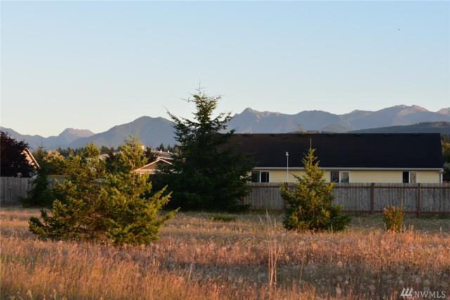 9999 Bolster Wy, Carlsborg, WA 98382 (#1333884) :: Real Estate Solutions Group