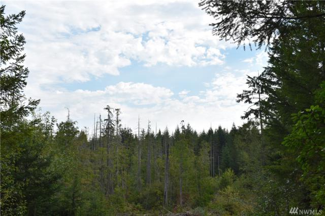 11295 Coyle Rd, Quilcene, WA 98376 (#1334773) :: Homes on the Sound