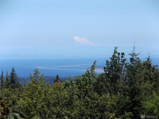 245 Scenic View Lane, Port Angeles, WA 98362 (#1336072) :: Kimberly Gartland Group