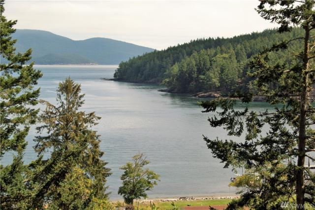 136 Point Of View Dr, Orcas Island, WA 98243 (#1339398) :: Homes on the Sound