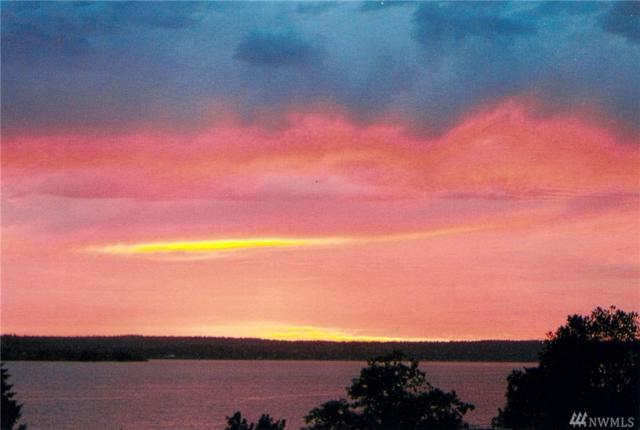 6714 Lake Washington Blvd NE #3, Kirkland, WA 98033 (#1339761) :: The DiBello Real Estate Group