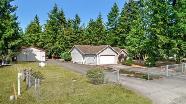 18727 Sams Place Sw, Rochester, WA 98579 (#1340862) :: Northwest Home Team Realty, LLC