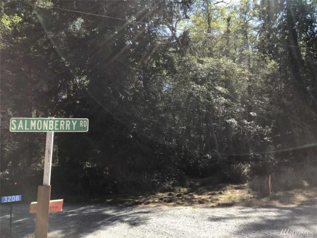 0-XXX Salmonberry Rd, Langley, WA 98260 (#1341016) :: Keller Williams - Shook Home Group