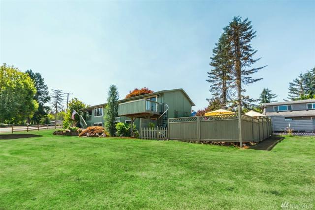 262--4 Curtis Hill Rd, Adna, WA 98532 (#1341908) :: Chris Cross Real Estate Group
