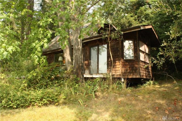 196 Cayou Valley Road, Orcas Island, WA 98245 (#1342172) :: Kimberly Gartland Group