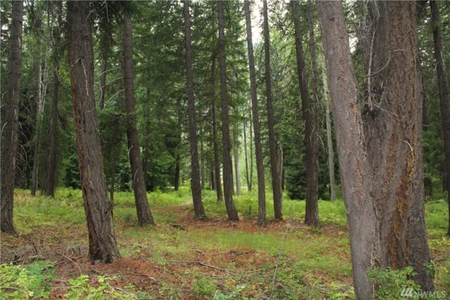 548 Lost River Rd, Mazama, WA 98833 (#1342368) :: Homes on the Sound