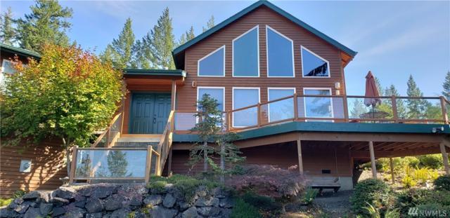 20 E Mount Ellinor Ct, Union, WA 98592 (#1344328) :: Crutcher Dennis - My Puget Sound Homes