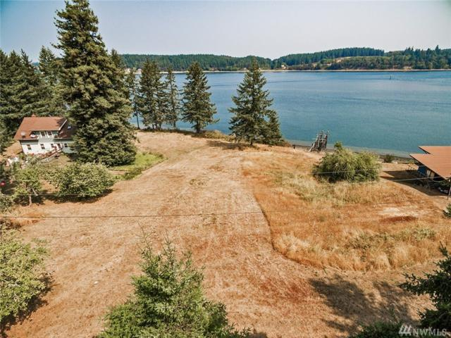12319 Glenhaven Rd Ai, Anderson Island, WA 98303 (#1344691) :: Real Estate Solutions Group