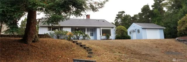 22913 Pacific Wy, Ocean Park, WA 98640 (#1344768) :: NW Home Experts