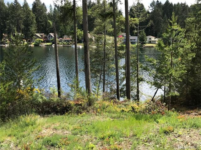 9719 118th Ave Ai, Anderson Island, WA 98303 (#1344832) :: Homes on the Sound