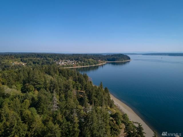 0 76th St Ct SW, Longbranch, WA 98351 (#1346436) :: Homes on the Sound