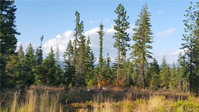 132 Tall Pines Dr, Cle Elum, WA 98922 (#1347904) :: Homes on the Sound