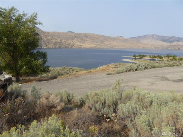 4934 Plum Point E, Grand Coulee, WA 99133 (#1348200) :: Carroll & Lions