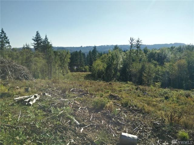 0 S Military Rd, Vader, WA 98593 (#1350013) :: Better Homes and Gardens Real Estate McKenzie Group