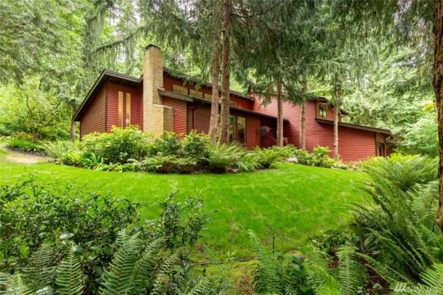 15206 263rd Ave SE, Issaquah, WA 98027 (#1350507) :: The DiBello Real Estate Group