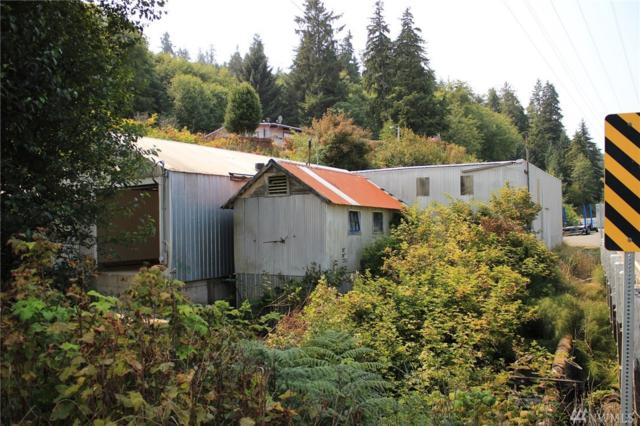 16492 Hwy 112, Clallam Bay, WA 98326 (#1350629) :: Real Estate Solutions Group