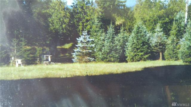 0 Off Kosmos Road, Glenoma, WA 98937 (#1351410) :: The Vija Group - Keller Williams Realty
