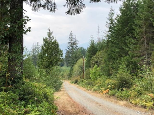 9-xxx Coyle Rd, Quilcene, WA 98376 (#1354158) :: Real Estate Solutions Group