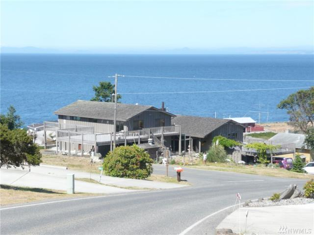 3921 Diamond Point Rd, Sequim, WA 98382 (#1354968) :: NW Home Experts