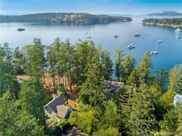 378 Armadale Rd, Friday Harbor, WA 98250 (#1355028) :: Carroll & Lions