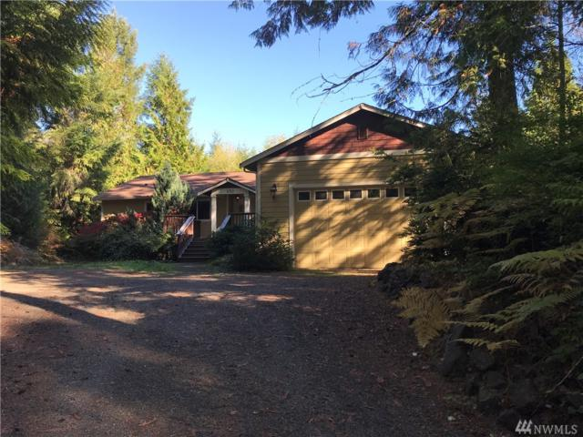 230 E Willopa Rd, Shelton, WA 98584 (#1355451) :: The Home Experience Group Powered by Keller Williams