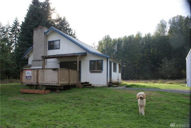 123 Dresher Rd, Mineral, WA 98356 (#1355561) :: Alchemy Real Estate