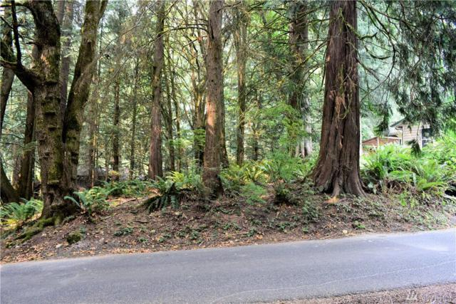 0 West Rd, Sedro Woolley, WA 98284 (#1355932) :: Homes on the Sound
