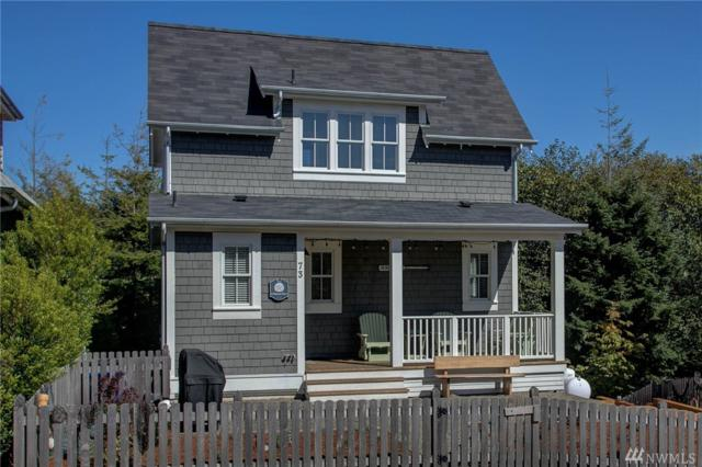73 Stumptown Lane, Pacific Beach, WA 98571 (#1357279) :: Real Estate Solutions Group