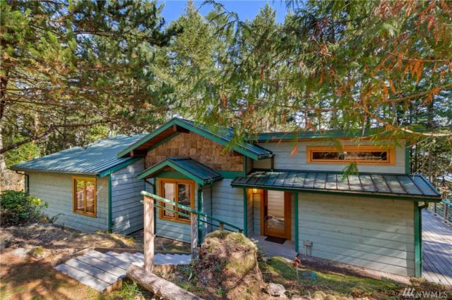 375 Shoreline Lane, Friday Harbor, WA 98250 (#1361296) :: Homes on the Sound