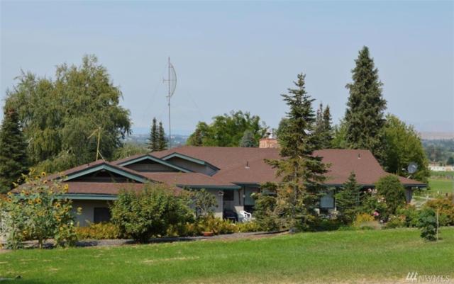 771 Ray Symmonds Dr, Yakima, WA 98901 (#1362397) :: Kimberly Gartland Group
