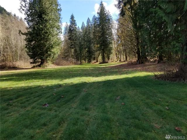 15398 State Route 530, Concrete, WA 98237 (#1362398) :: Alchemy Real Estate