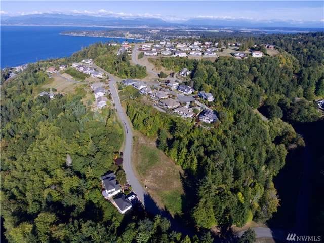 1048 Malvern Hills Drive, Camano Island, WA 98282 (#1363016) :: Priority One Realty Inc.